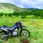セロー(XT250)@モンゴル、テレルジ国立公園