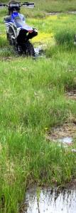 モンゴルの泥沼にはまったセロー